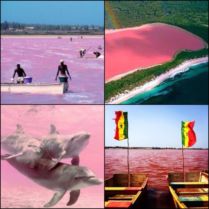 pink lake senegal