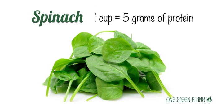 PhotoFact_Spinach